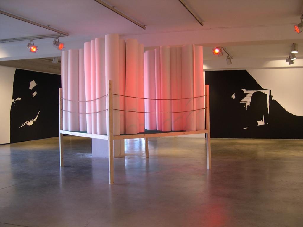 Le ring des rouleaux, Centre d'arts plastiques de Saint Fons, 2006